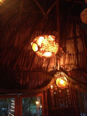 La Cabana del Pescador: the balloon fish just hanging around.