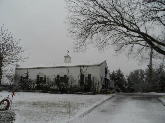 Black Horse Inn: Barn