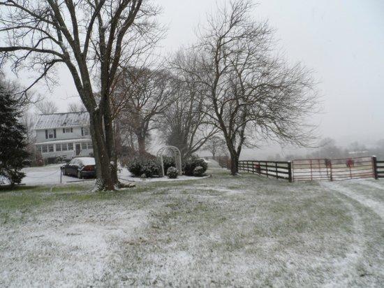Black Horse Inn : Winter wonderland