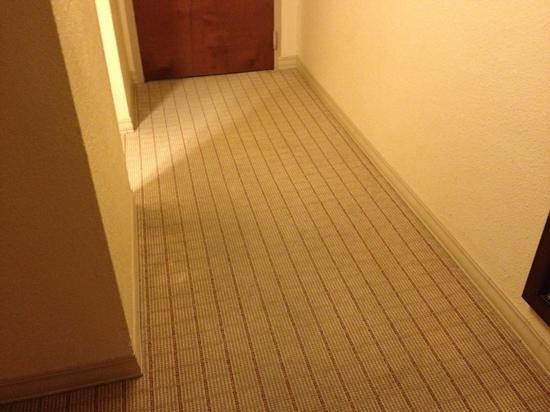 쉐라톤 탬파 리버워크 호텔 사진