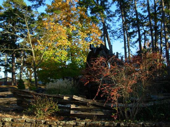 Bear Mountain Log Cabins: Eureka Springs foliage