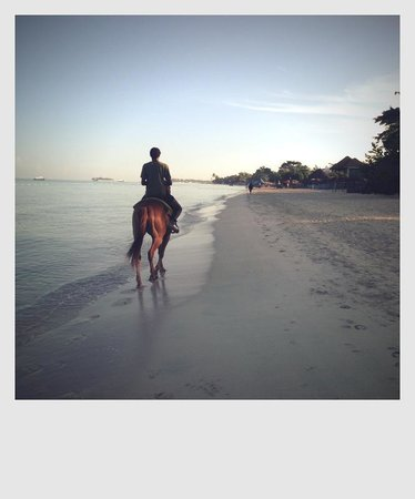 Turner Taxis and Tours Jamaica: horseback riding along the beach