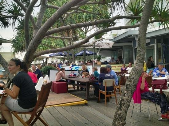 Coffee Cat on Kings Beach: fantastic beachside cafe'