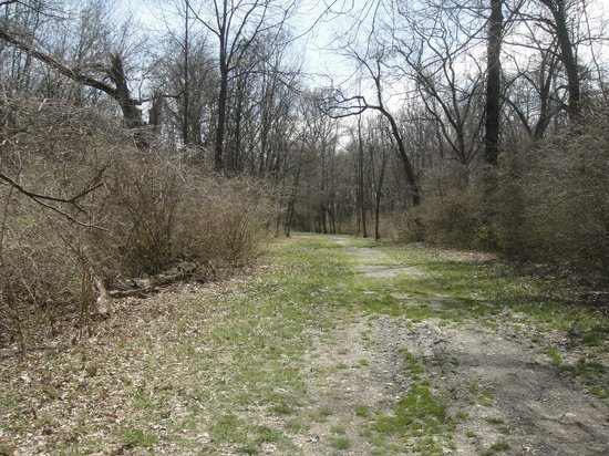 cahokia mounds state historic site essay Tag: nature my travels why skyline drive is my favorite american highway march 20, 2017 skyline drive is a stunning section of shenandoah national park in the.