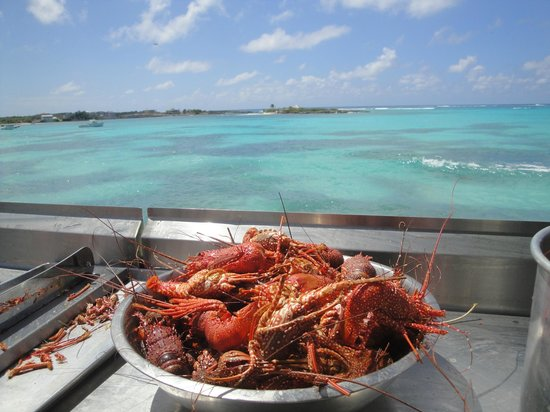 Island Harbour, Anguila: Backyard Grill in preparing the Crayfish