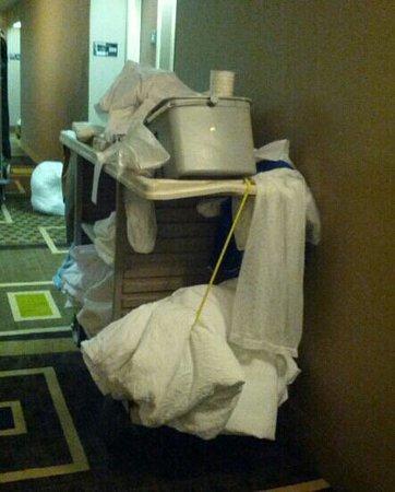 هامبتون إن إنديانابولس نورث إيست/كاسلتون: Housekeepers cart