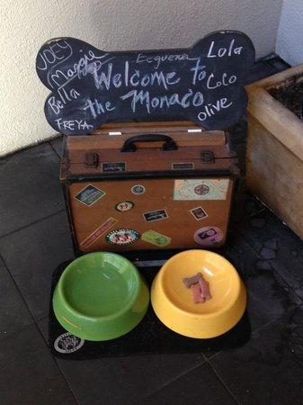 The Marker San Francisco, A Joie de Vivre Hotel: Welcome to the pets!