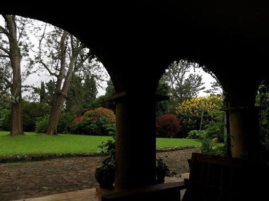 Huntingdon House: Looking out into the gardens from the veranda
