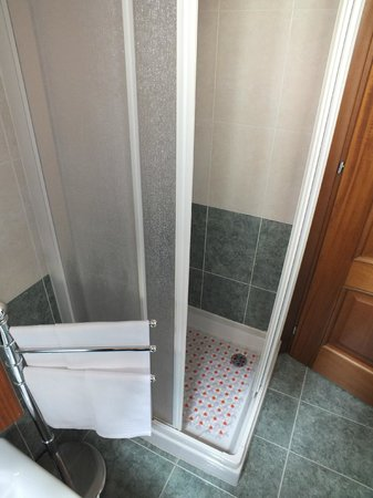 Alberghiera Venezia: Shower in the bathroom