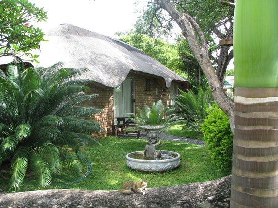Mufasa Lodge Phalaborwa