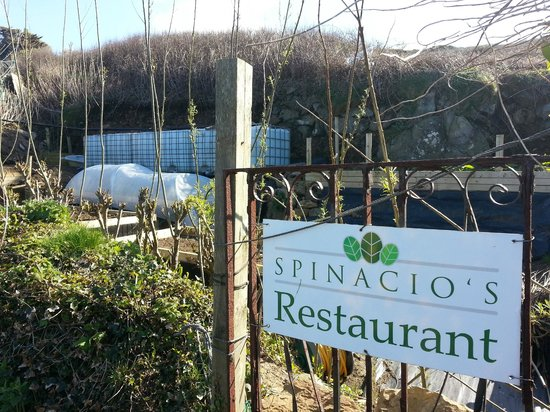 Spinacio's allotment to the west of Porthmeor Beach