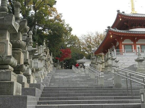 at koshoji temple