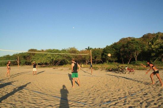 Tamarindo Beach : Beachvolley