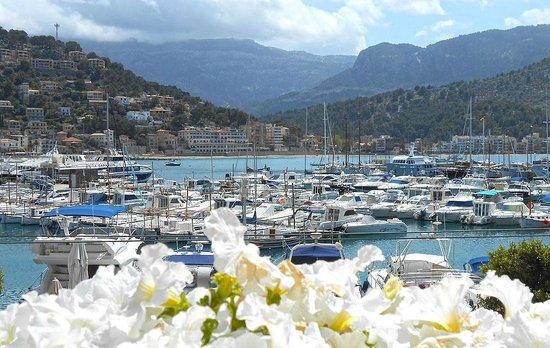 Sóller, España: Puerto de Soller