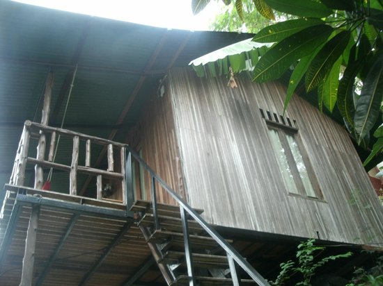 Tropical Garden Bungalows: view from the ground