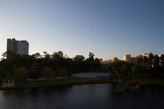 Hilton Orlando Buena Vista Palace Disney Springs: View from our balcony