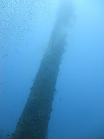 Sunken Japanese Wrecks : ship wreck