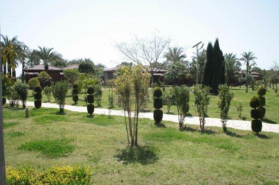Club Calimera Serra Palace : Vu de la chambre-Terrasse