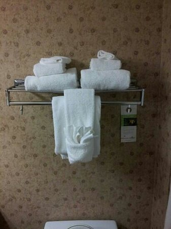 Holiday Inn Express & Suites Jacksonville Airport: towel station