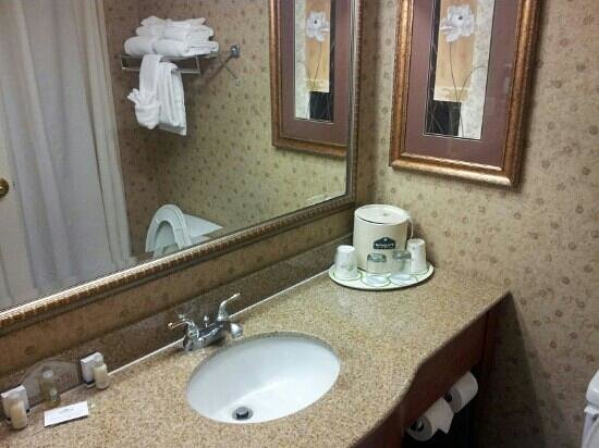 Holiday Inn Express & Suites Jacksonville Airport: bathroom