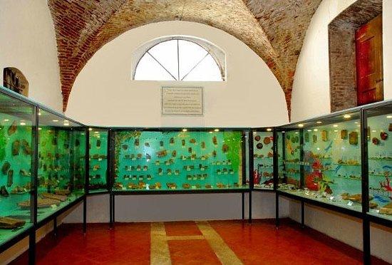 Museo dei Fossili Pierluigi Malinverni