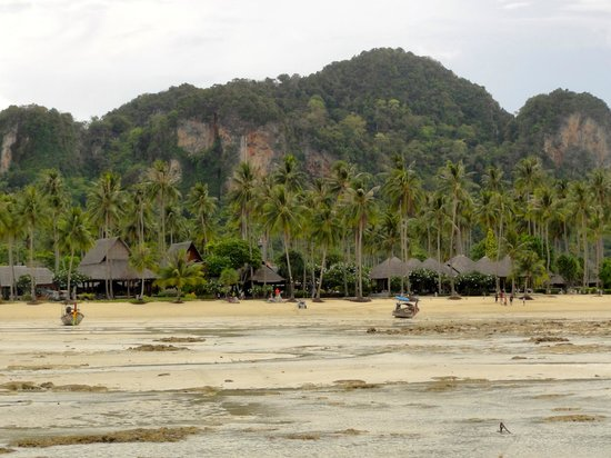 Phi Phi Island Village Beach Resort: When the tide is out (view from long-tail boat)