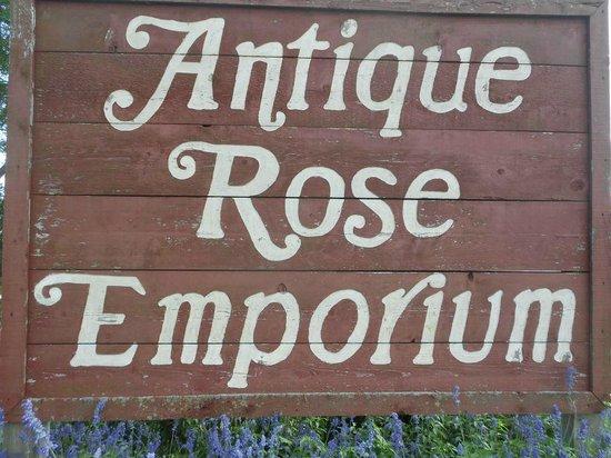 Antique Rose Emporium: in Independence, TX