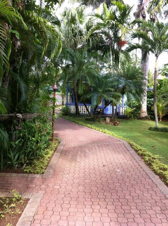 Country Country Beach Cottages: walkway to our room