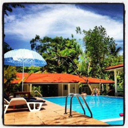 Beach Grove Villas: The fabulous infinity pool