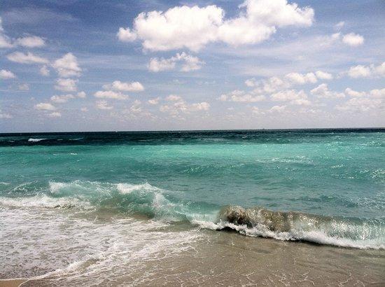 Hotel Indigo Miami Lakes: Trip to the beach.
