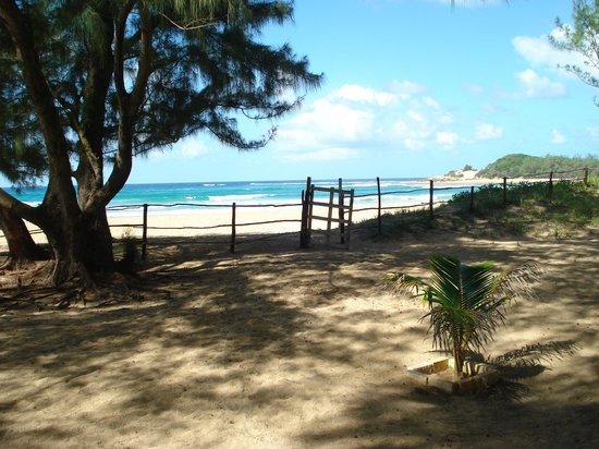 Nordin's Lodge beachfront 3