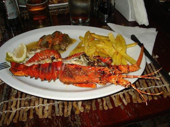 Nordin's Lodge: Grilled Lobster - Casa de Comer Restaurant