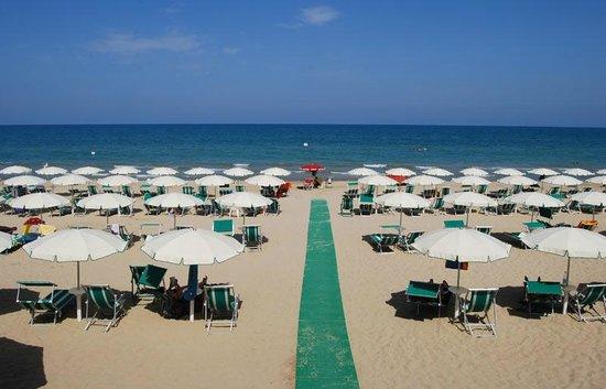 Hotel la Pineta: La spiaggia dell' Hotel