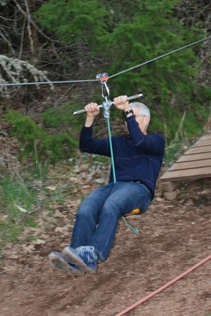Out 'n' About Treehouse Treesort: Low zip line for young ones, or checking out how to zip