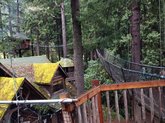Out 'n' About Treehouse Treesort: Rooms in the trees