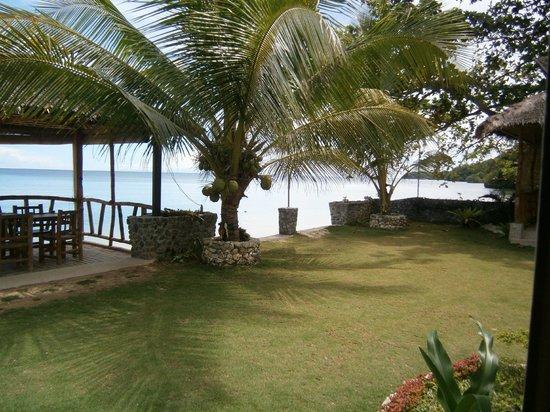 Michael's Resort and Dive: garden view