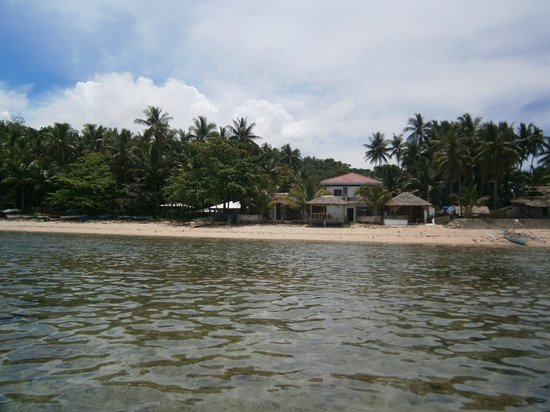 Michael's Resort and Dive : sea view