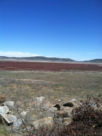 Lake Cuyamaca: view of field around the lake