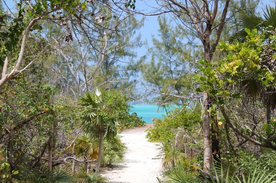 Exuma Vacation Cottages: Typical public beach access area