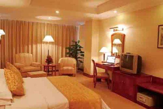 Conifer Hotel Picture