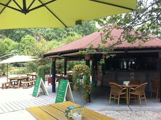 Cafeteria jardin botanico la concepcion malaga for Bodas jardin botanico malaga