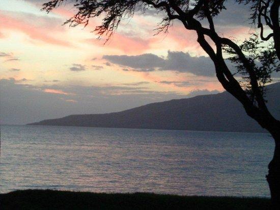 Koa Lagoon : View from the Lanai