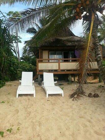 Palm Grove: beach bungalow B1....feels like your own private beach down this end....