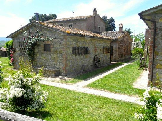 Borgo Santa Maria: limonaia