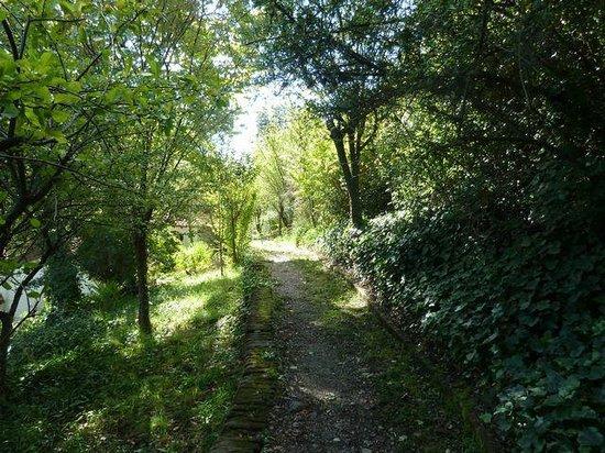 Casa de Manuel Mujica Láinez  : More views of the peaceful and lush gardens