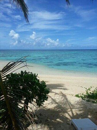 Palm Grove: B1 view