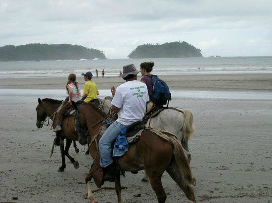 Alta Vista Condominium : After Horse Tour - trotting on the beach
