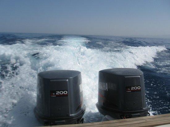 Blue Boat Charters Hurghada : Twin V6
