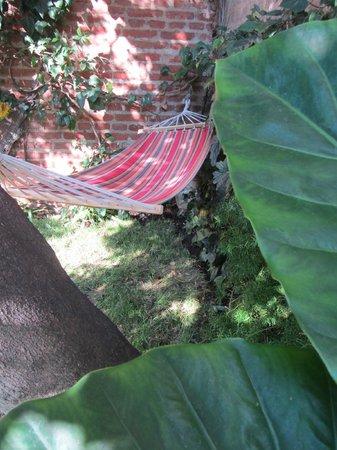 Hostel Los Gaviotines: Jardin del Eden