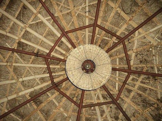 Dehradun, India: Roof of hut
